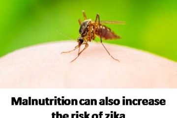 Malnutrition can also increase the risk of zika